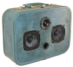 Blue Seger Sonic Suitcase