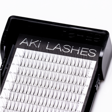 Load image into Gallery viewer, 3D Mixed Premade Fans - Aki Lashes