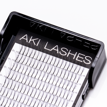 Load image into Gallery viewer, 3D Premade Fans - Aki Lashes