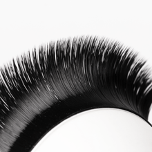 Load image into Gallery viewer, Rapid Smart Russian 0.07 Mixed Volume Lashes - Aki Lashes