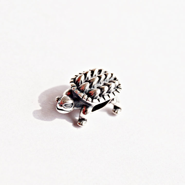 The Fortune Turtle Charm