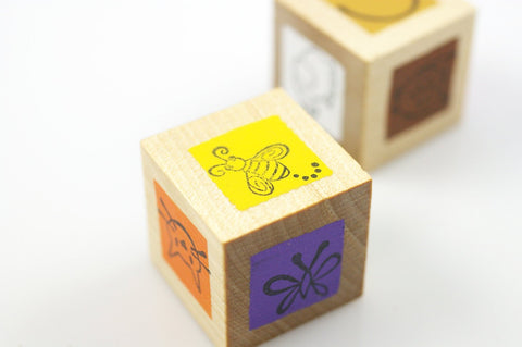 Color and language cubes - Wonder's Journey