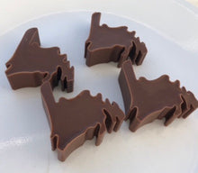 Load image into Gallery viewer, Silicone Newfoundland Map Ice Cube / Chocolate Tray