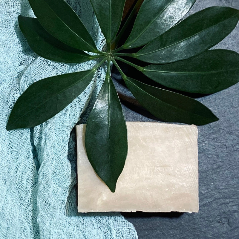 Palmas de coco bath soap displayed with plant and green gauze