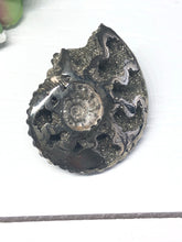 Load image into Gallery viewer, Pyritized ammonite kundalini creative spiral Y3N - The7directions