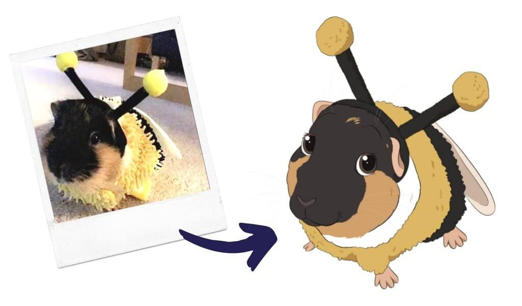 guinea pig cartoon before and after art