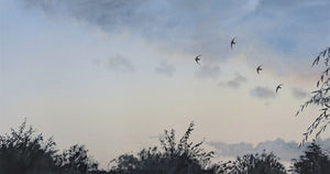 Swifts over the Garden, Gilling East. Print