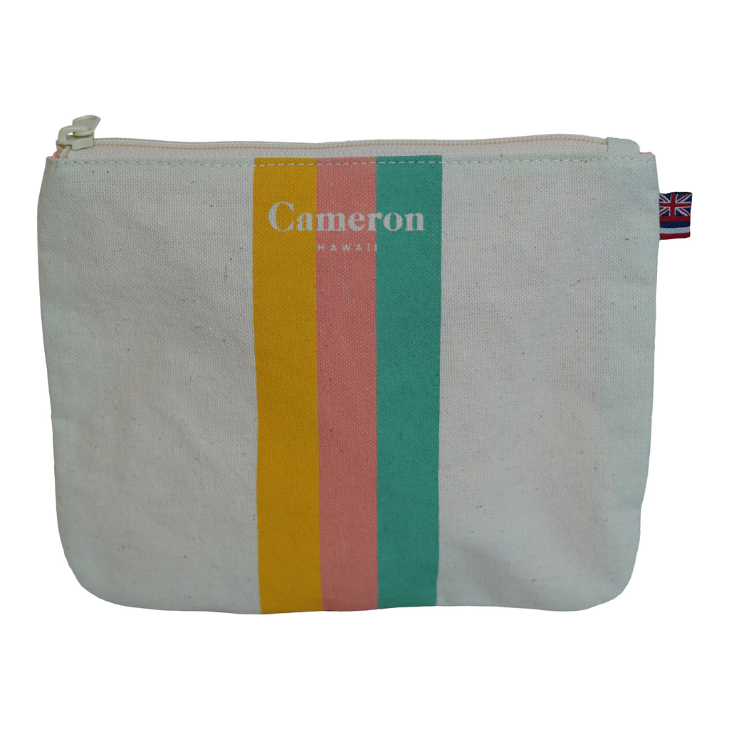 3 Color Stripe - Small Clutch - Breeze