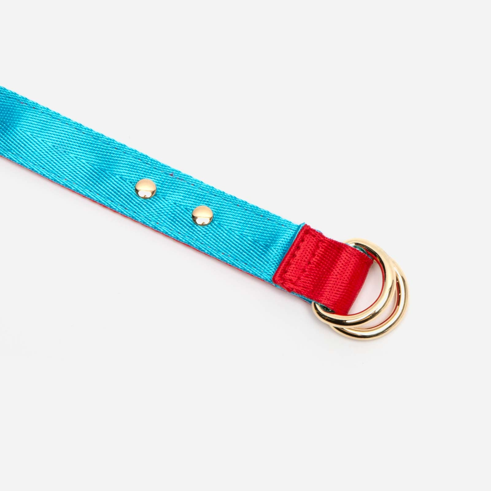 Reversible Webbing Belt Red Light Blue - Frances Valentine