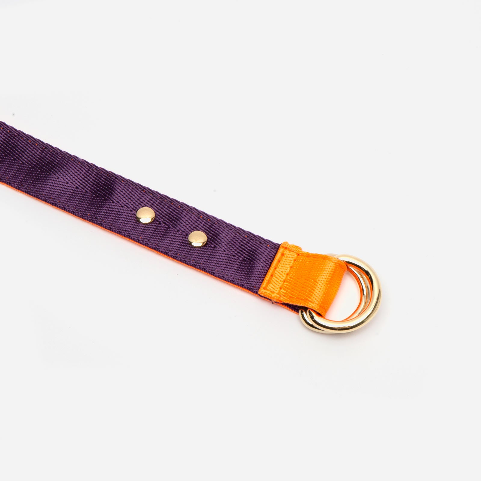 Reversible Webbing Belt Orange Purple - Frances Valentine