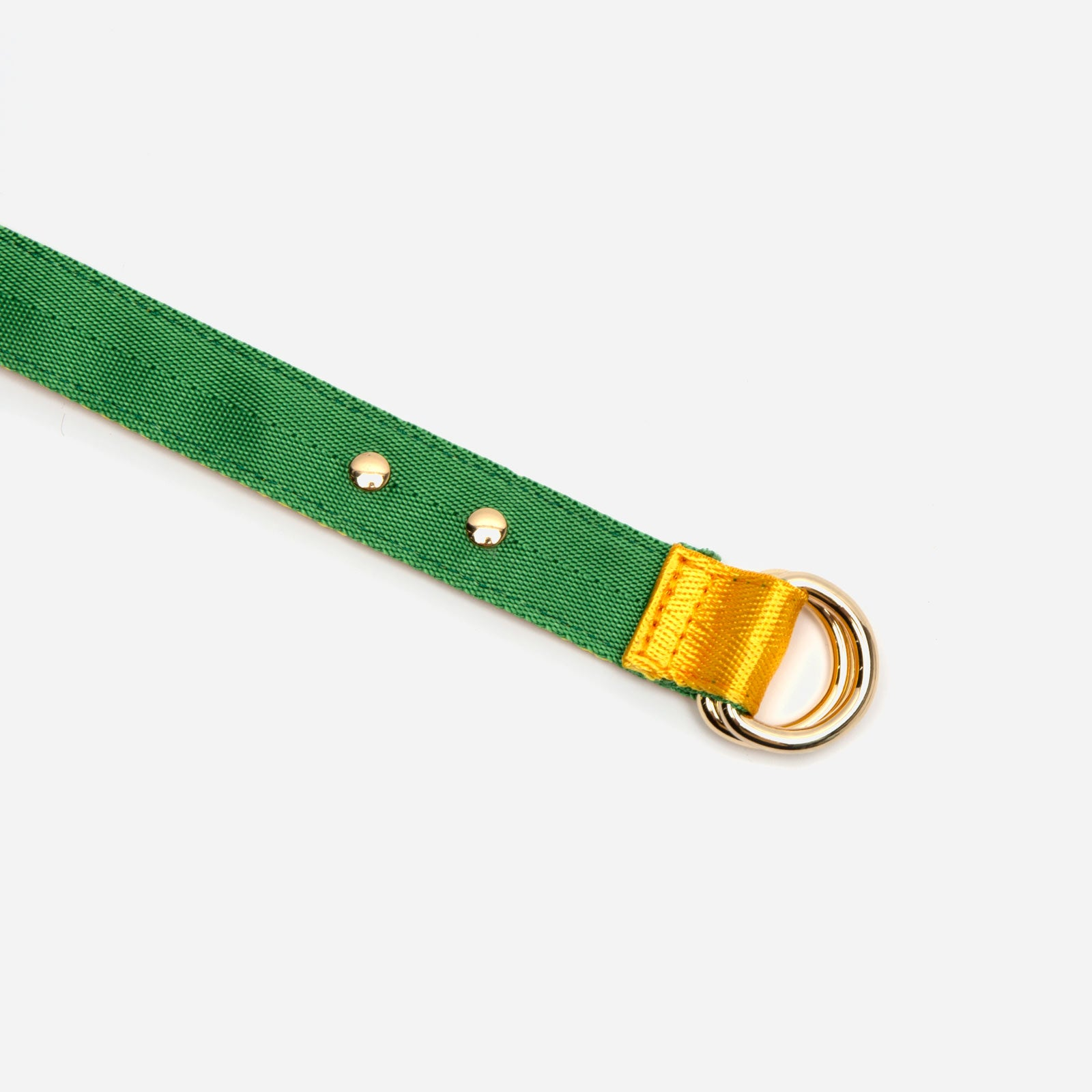 Reversible Webbing Belt Yellow Green - Frances Valentine