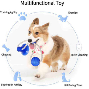 Flexible Pet Molar Toy