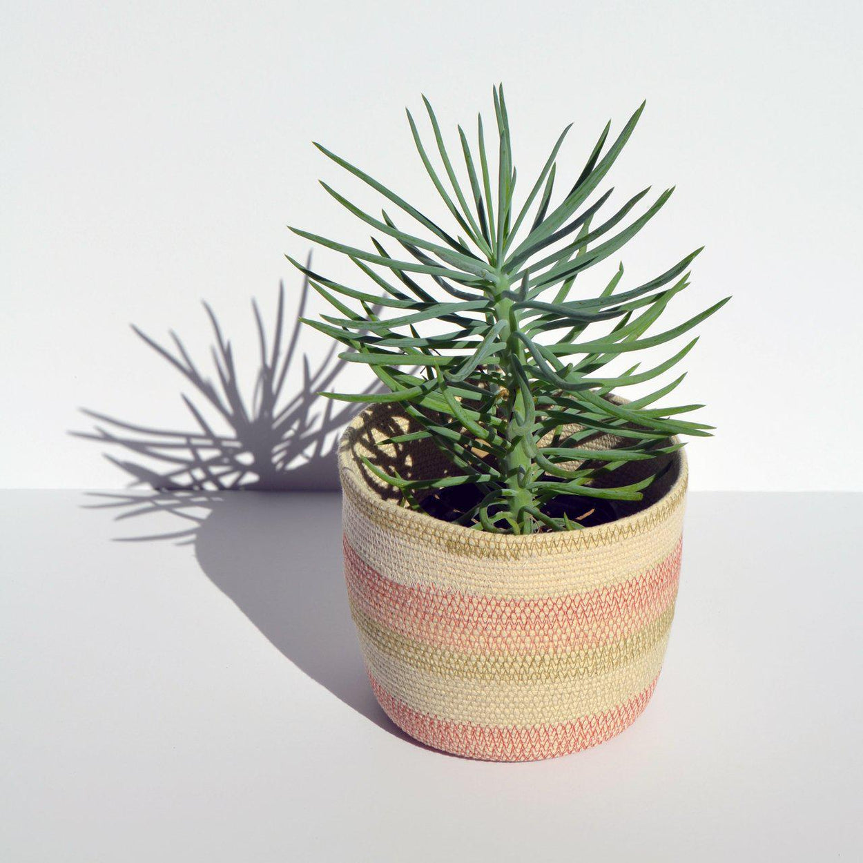 Small Woven Bucket Basket-Mokun-Desert Flower-Crying Out Loud