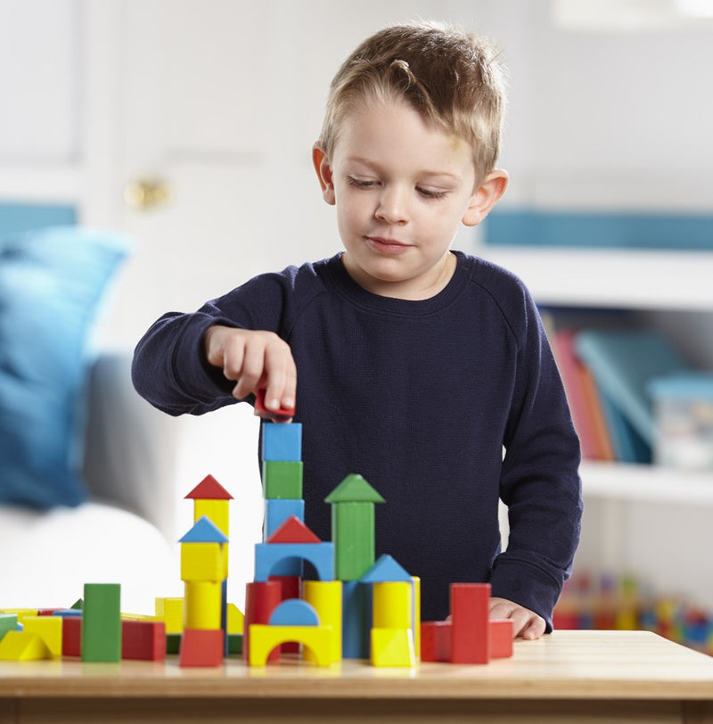 Painted Blocks - 100-Piece Set