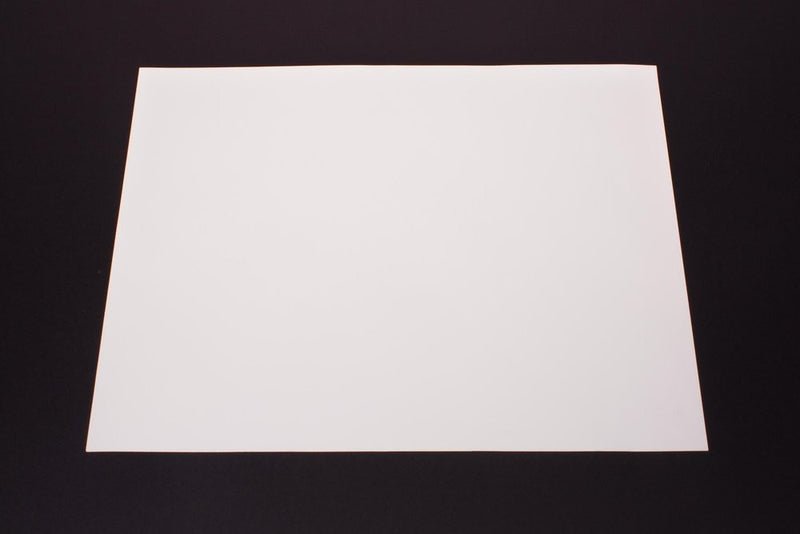 White Poster Board (100 sheets)