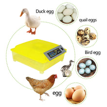 Load image into Gallery viewer, Chicken Egg  Duck Parrot Incubator Hatching Machine