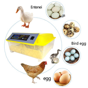 Chicken Egg  Duck Parrot Incubator Hatching Machine
