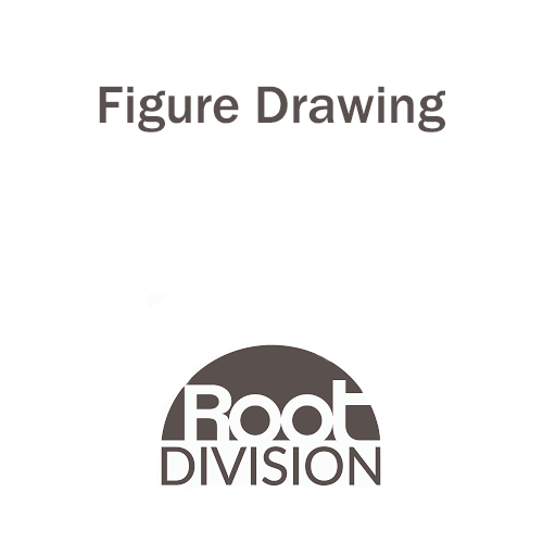 Figure Drawing - Root Division