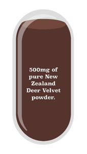 500mg of pure New Zealand deer velvet powder