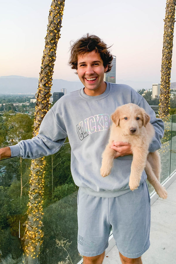 David Dobrik Stone Gray Iridescent Crewneck