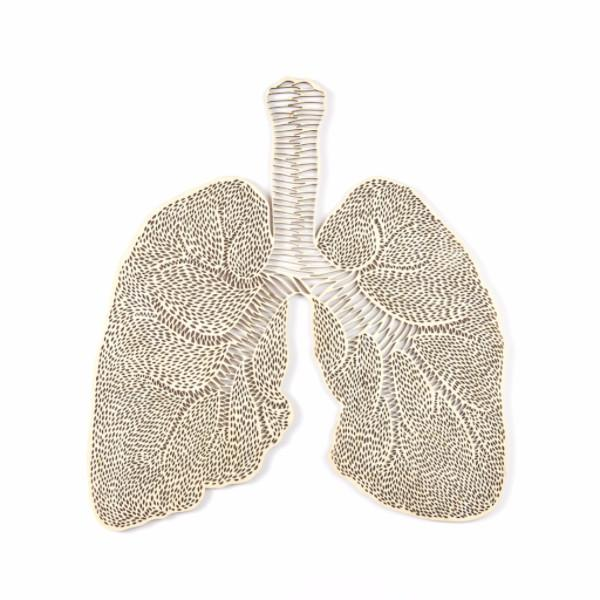 Light + Paper Studio - ANATOMICAL LUNGS WOODEN ARTWORK