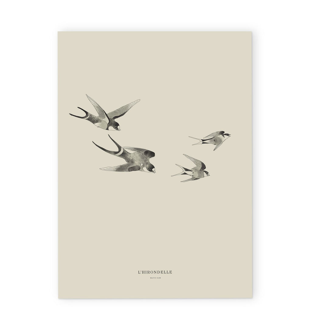 "Baltic Club - Swallows 12x18"" Art Print"