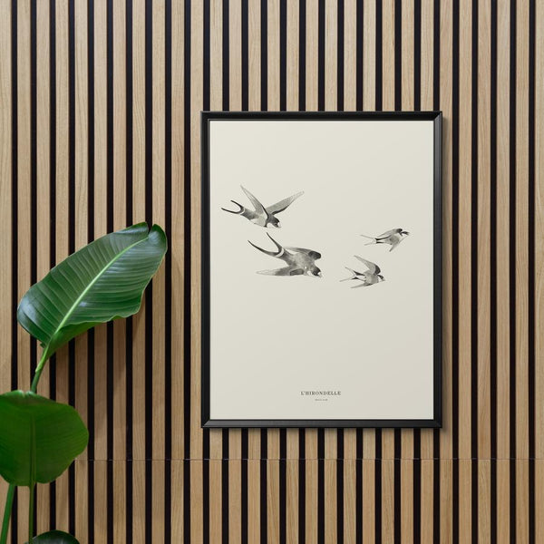 "Baltic Club - Swallows 8x10"" Art Print"