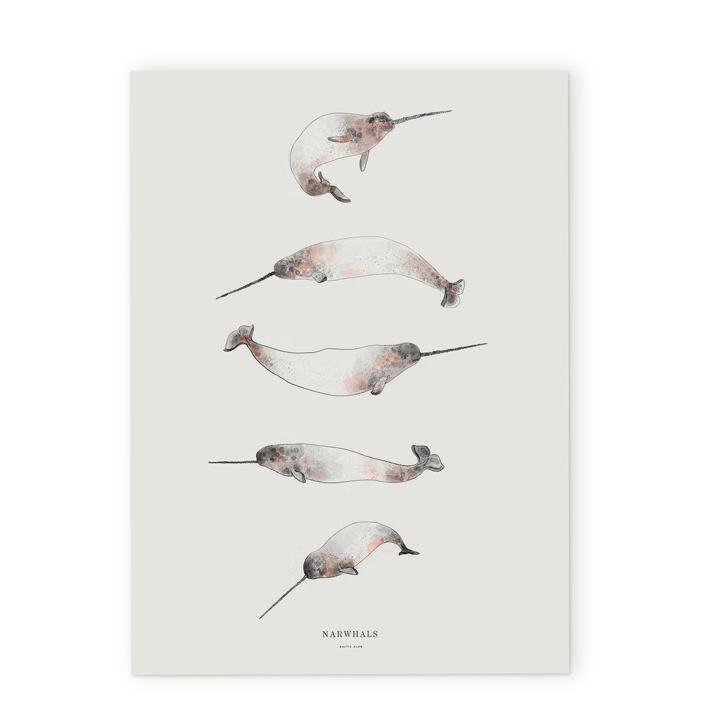 "Baltic Club - Narwhals 12x18"" Art Print"
