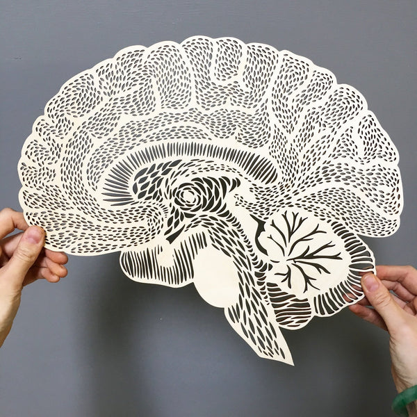 Light + Paper Studio - ANATOMICAL BRAIN WOODEN ARTWORK