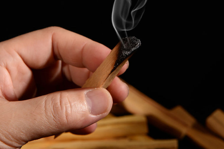 7 Incredible Benefits of Palo Santo and How to Use it for Health and Healing