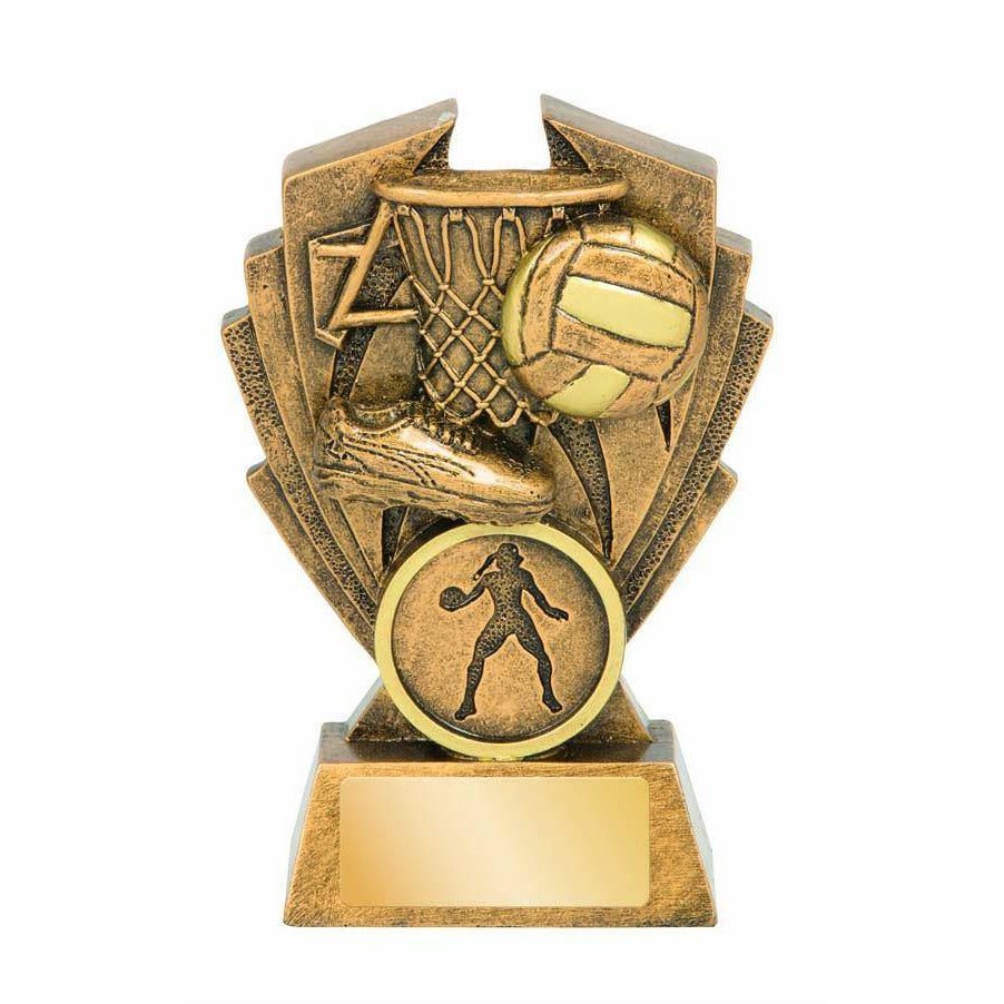 Hawk Series Netball Trophy freeshipping - The Trophy Superstore