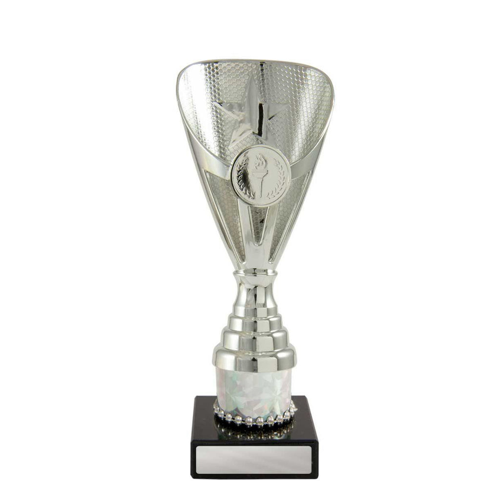 Arianna Silver Cup available in five sizes and eight colours