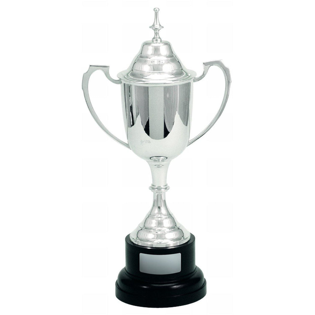 Traditional Silver Cup