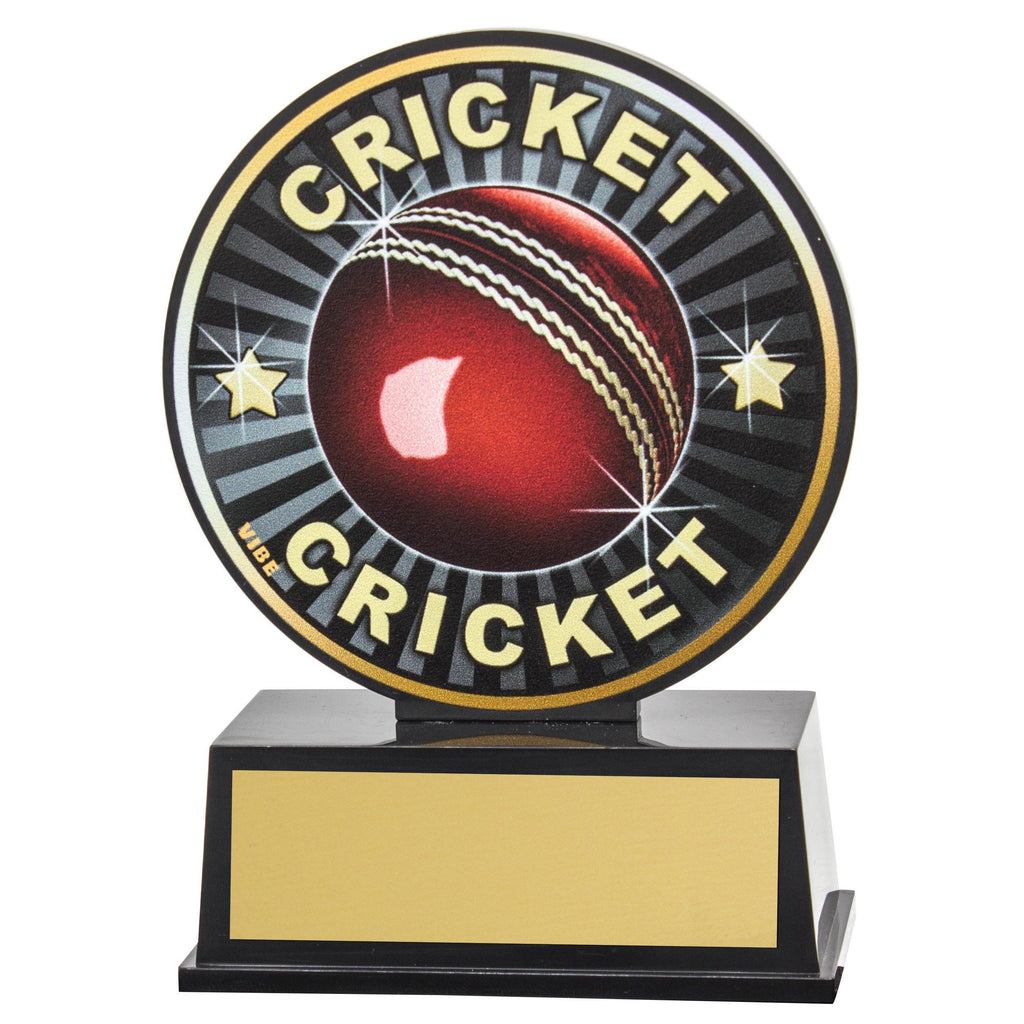 Cricket Vibe Trophy available in only one size - The Trophy Superstore