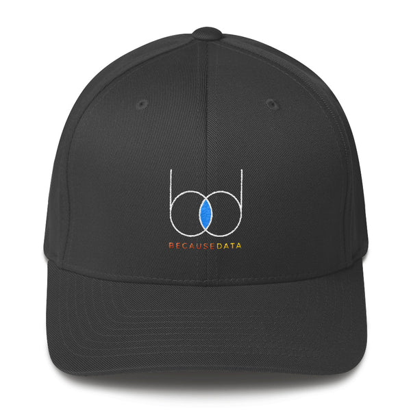 becausedata Fitted Hat