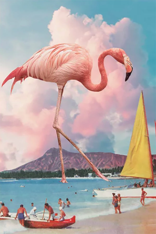Flamingo Playground