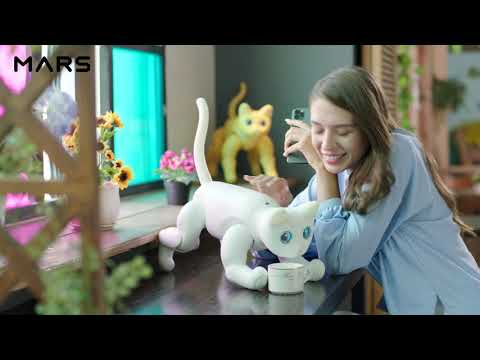 MarsCat: A Bionic Cat, A Home Robot [Ready-To-Order!]