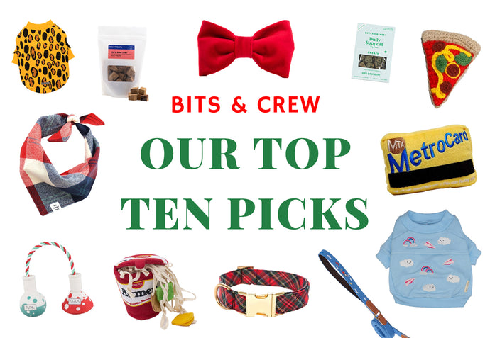 Our Top 10 Picks!