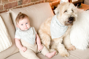 (Hooman) Baby and Pet Bib Set in Gray