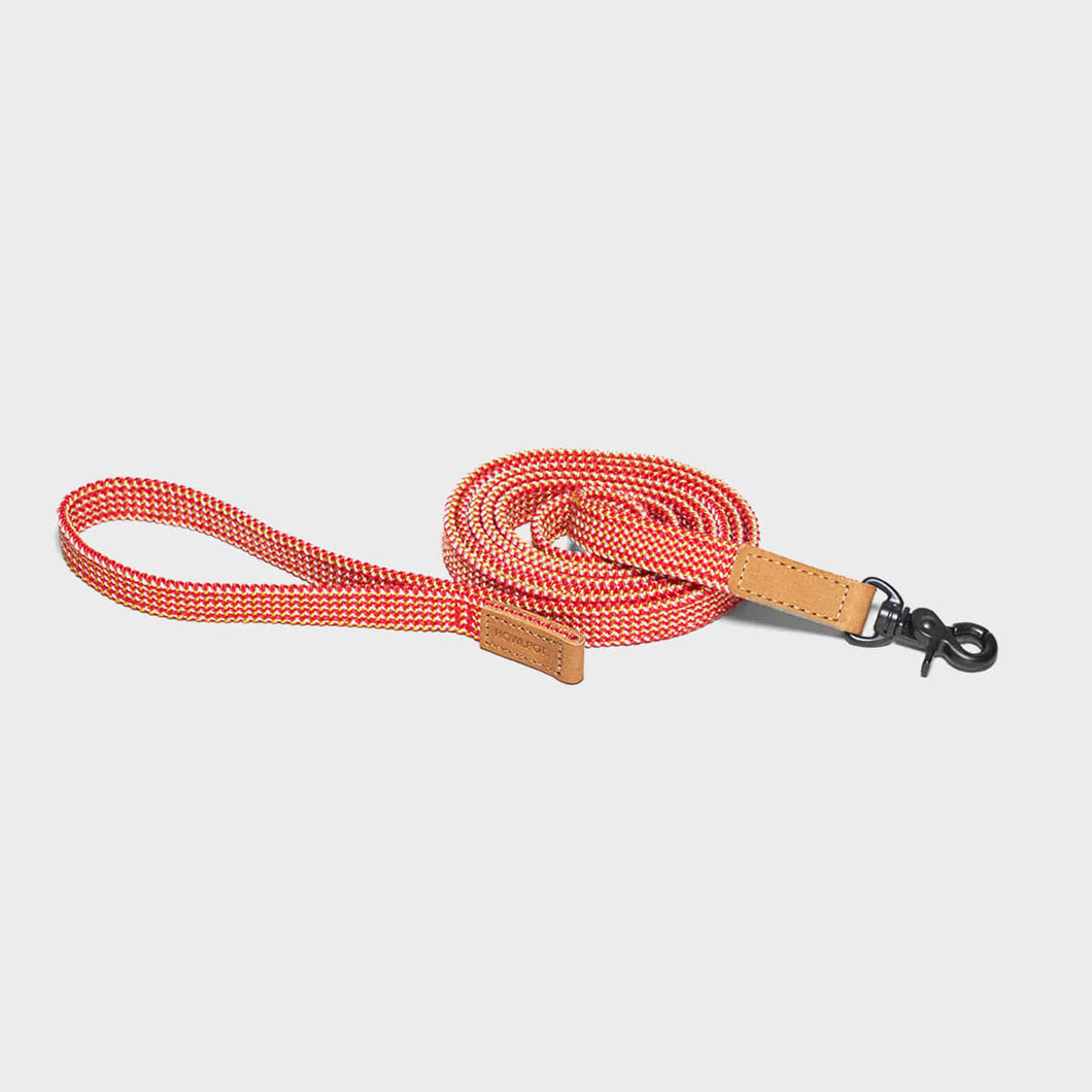 Ribbon Type Leash - Cherry Twizzle