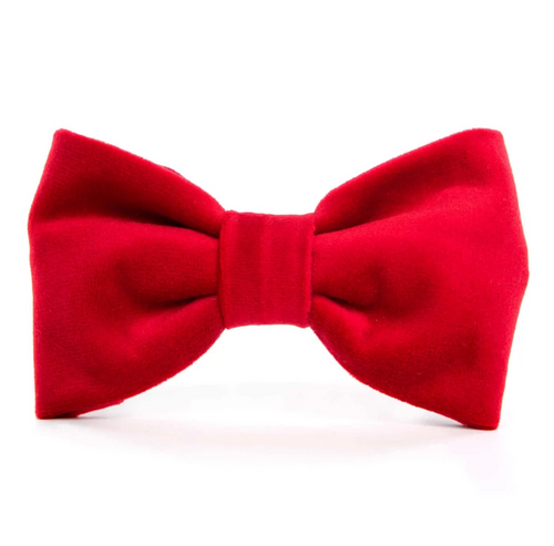 Cranberry Velvet Dog Bow Tie