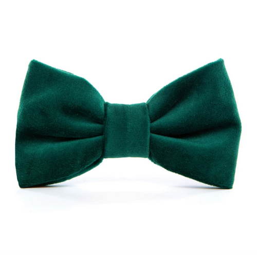 Forest Green Velvet Dog Bow Tie