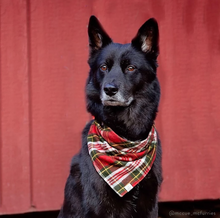 Load image into Gallery viewer, Tartan Plaid Flannel Dog Bandana
