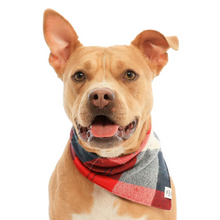 Load image into Gallery viewer, Mammoth Flannel Dog Bandana
