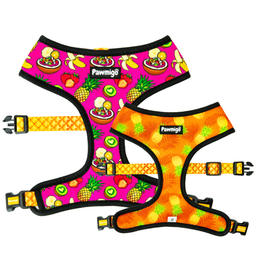 Snack Shack Reversible Harness