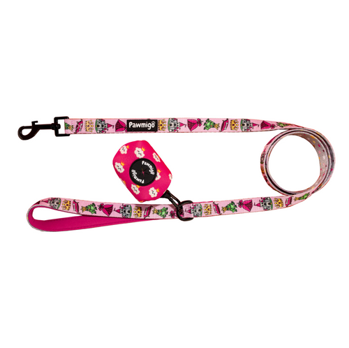 Fairytail Leash Kit