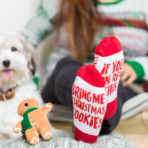 Sock & Dog Toy Gift Set, Christmas Cookies