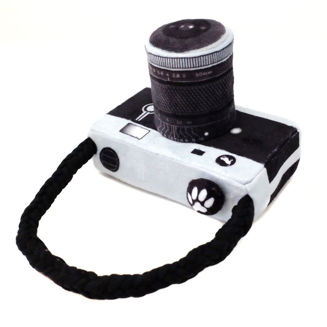 Globetrotter Toy - Lens Licker Camera