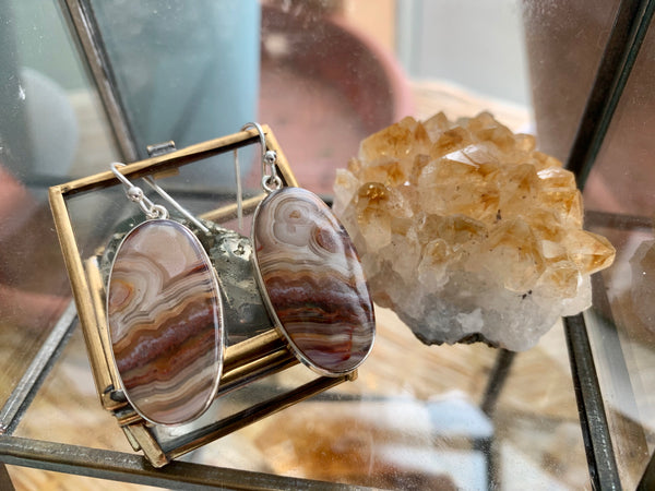 Crazy Lace Agate Large Akoni Earrings - Jewels & Gems