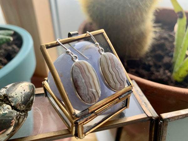 Crazy Lace Agate Medium Akoni Earrings - Jewels & Gems
